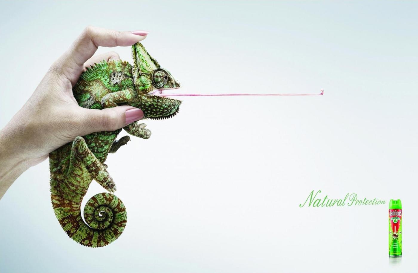advertising templates brand manager guide advertising templates absurd alternative shieldtox naturgard chameleon